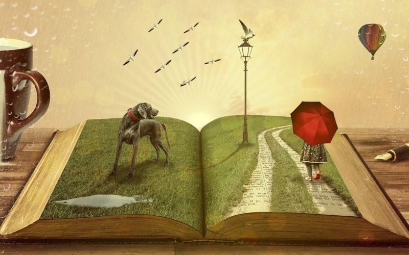 Lernen, glücklich, Bildung, lebenslänglich-lernen, lernen-macht-glücklich