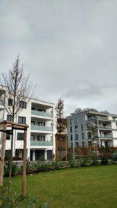 Immobilienkauf über 50
